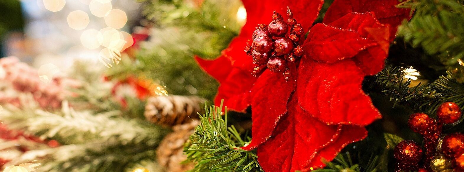 Greek Christmas Traditions