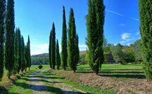 Villa Gualchiere